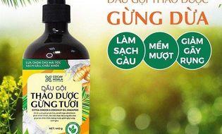 Thực phẩm - 3 cách trị gàu bằng dầu dừa hiệu quả và an toàn tại nhà, áp dụng ngay!