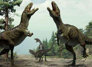 Video: Điều gì sẽ xảy ra nếu khủng long không bị thiên thạch xóa sổ?