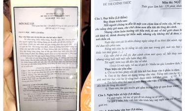 Chuyện học đường - Thực hư thông tin đề thi Ngữ văn vào lớp 10 ở Nghệ An bị rò rỉ