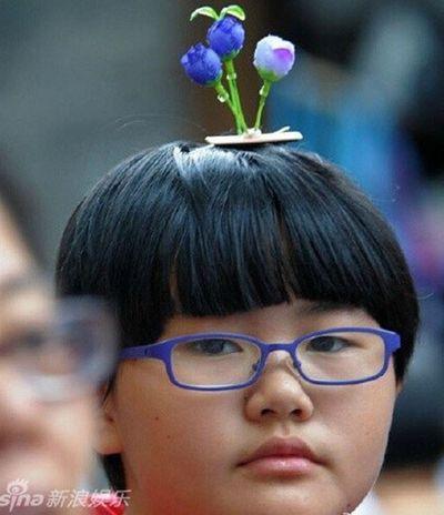 Mốt dùng kẹp mầm cây giả trên đầu của giới trẻ Trung Quốc - ảnh 1