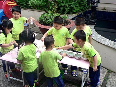 Giáo dục kỹ năng sống: Cần đưa vào chương trình tiểu học - ảnh 1