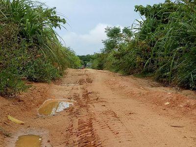 Chủ nhiệm Hợp tác xã môi trường thuê người khai thác cát lậu - ảnh 1