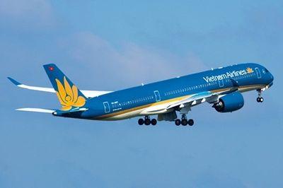 Máy bay Vietnam Airlines quay đầu vì va phải chim - ảnh 1