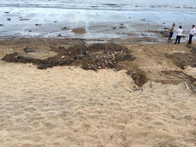 Bãi biển Quy Nhơn xuất hiện bùn đen - ảnh 1