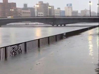 Siêu bão Hagibis tàn phá Nhật Bản khiến ít nhất 11 người chết - ảnh 1