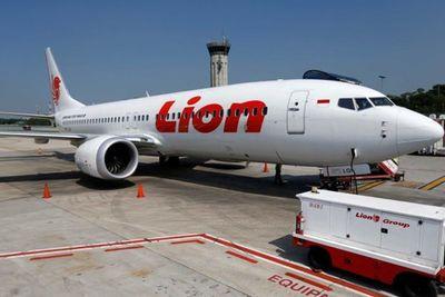 Indonesia phát hiện vết nứt lạ trên máy bay hiện đại Boeing 737 NG - ảnh 1