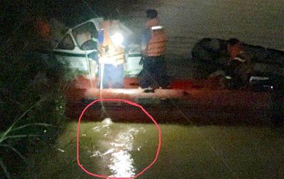Đưa thi thể nạn nhân bị xe container húc văng xuống sông Hồng lên bờ - ảnh 1