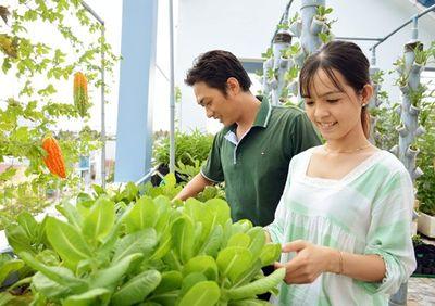 """Ngưỡng mộ """"Khu vườn tình yêu"""" đơm trái ngọt trên sân thượng của cặp vợ chồng trẻ Cà Mau - ảnh 1"""