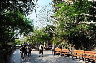 Đà Nẵng: Miễn phí vào cửa nhiều điểm tham quan để kích cầu du lịch - ảnh 1