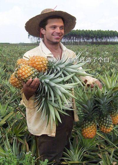 """""""Cười nghiêng ngả"""" với ảnh chế sao Hollywood thu hoạch nông sản cực bá đạo - ảnh 1"""