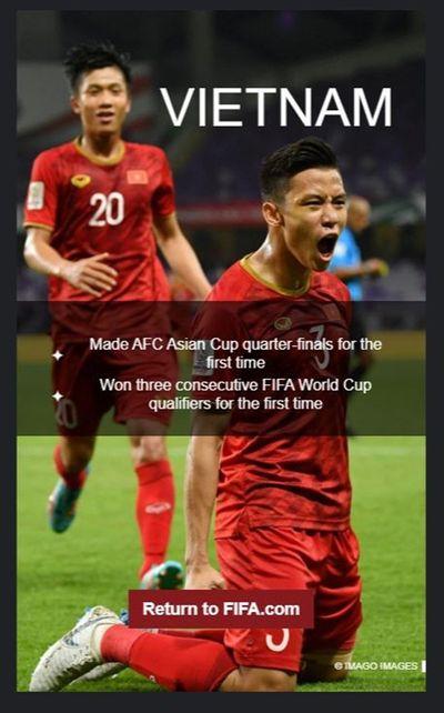 ĐT Việt Nam được FIFA vinh danh trong top 12 đội bóng của năm 2019 - ảnh 1