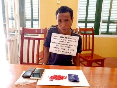 Nghệ An: Đối tượng vận chuyển hơn 12kg ma túy bị tóm gọn - ảnh 1