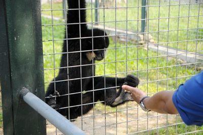 """Vườn thú đẳng cấp của """"đại gia điếu cày"""" Lê Thanh Thản tại quê nhà - ảnh 1"""