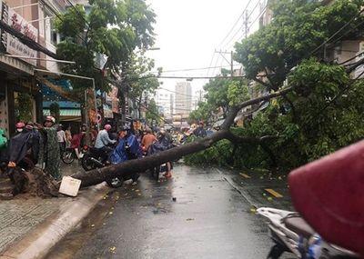 TP.HCM: Mưa lớn kèm dông lốc khiến đường ngập, cây đổ trên nhiều tuyến phố - ảnh 1