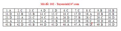 Đáp án, đề thi môn Toán mã đề 101,102,103,104,105 THPT quốc gia 2019 chuẩn nhất, chính xác nhất - ảnh 1