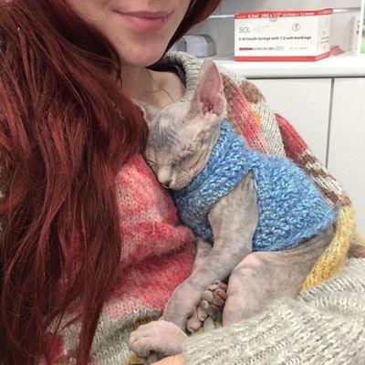 Cảm động cô gái cưu mang chú mèo mù và cái kết bất ngờ - ảnh 1