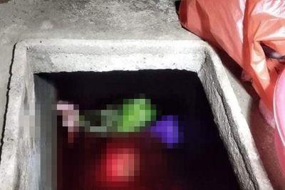 Vụ sát hại mẹ vợ, phi tang xác dưới bể nước ở Thái Bình: Trưởng công an xã tiết lộ điều bất ngờ - ảnh 1