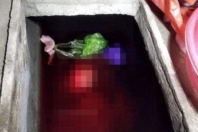 Rùng mình lời khai của con rể sát hại mẹ vợ, phi tang xác dưới bể nước ở Thái Bình - ảnh 1