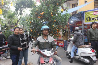 Người dân nô nức ghé thăm phiên chợ hoa Tết lâu đời nhất Hà Nội trong ngày rét ngọt  - ảnh 1