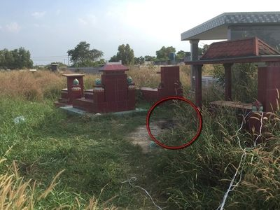 Vụ thi thể phụ nữ bị đốt trong nghĩa địa: Thông tin mới nhất từ công an - ảnh 1