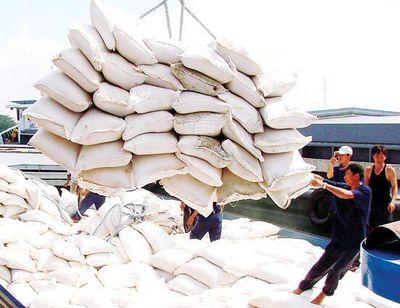 Tạm dừng ký hợp đồng xuất khẩu gạo mới - ảnh 1