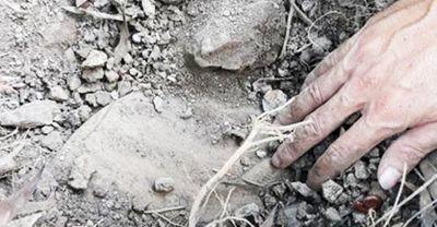 Vụ hơn 300 xác thai nhi bỏ theo rác: Kiến nghị giám định mẫu vật bên trong các hũ sành - ảnh 1