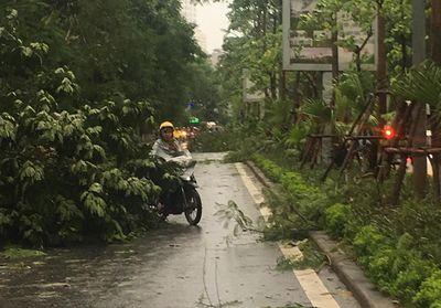 Loạt xe máy bị gió quật ngã, nằm ngổn ngang giữa đường ở HH Linh Đàm trong mưa dông - ảnh 1