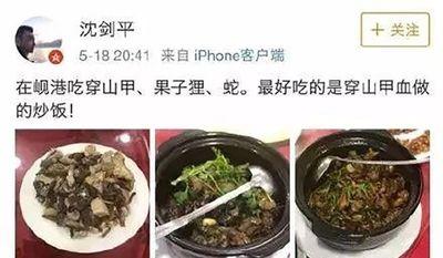 Ăn thịt động vật quý hiếm ở Việt Nam, sếp công ty Trung Quốc bị sa thải - ảnh 1