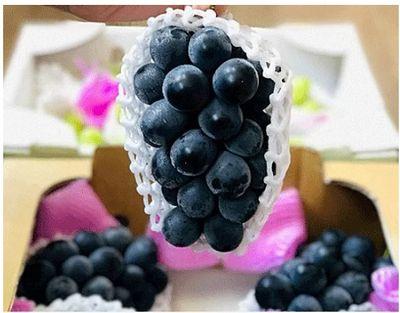Nho rượu trồng ở Đà Lạt giá 280 nghìn đồng/kg, hàng nhập từ Nhật giá cao gấp 7 lần - ảnh 1
