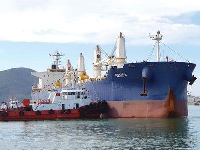 Giành lại quyền kiểm soát Cảng Quy Nhơn, Vinalines lập tức thay thế các vị trí quan trọng tại HĐQT - ảnh 1