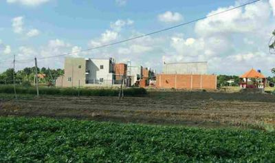 Thủ tướng đồng ý chuyển mục đích sử dụng 16,1 ha đất tại tỉnh Long An - ảnh 1