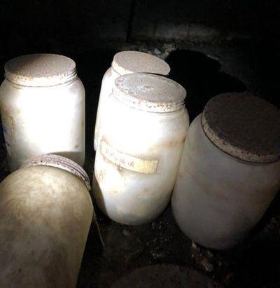 Vụ việc chấn động: Phát hiện những chiếc lọ đựng lưỡi người trong hầm nhà của một giáo sư - ảnh 1