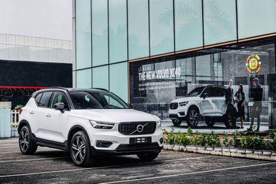 Volvo triệu hồi 736.000 xe vì lỗi phanh khẩn cấp tự động - ảnh 1