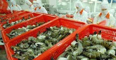 Xuất khẩu tôm bước tiến mới cho nông sản Việt - ảnh 1