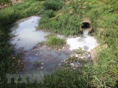 Bắt quả tang công ty giấy xả nước thải ra môi trường - ảnh 1