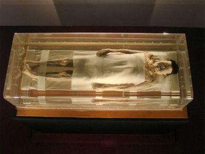 Kinh ngạc xác ướp 2.000 năm tuổi vẫn còn nguyên tóc, máu và tĩnh mạch - ảnh 1