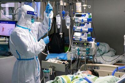 55 người chết vì chủng virus corona mới - ảnh 1