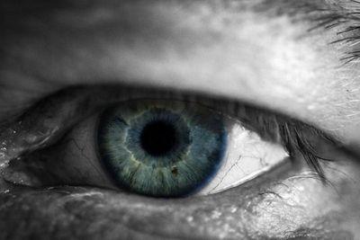 Tin tức đời sống mới nhất ngày 14/2/2020: Người mù đột nhiên sáng mắt trở lại sau tai nạn ô tô - ảnh 1