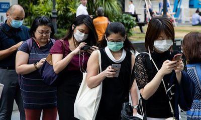 """Singapore báo nhầm kết quả dương tính Covid-19 cho 357 người do """"lỗi công nghệ"""" - ảnh 1"""