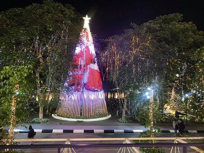 """Cận cảnh 3 cây thông Noel """"khổng lồ"""" được học sinh trang trí ngay trong sân trường cấp 2 ở Hà Nội - ảnh 1"""