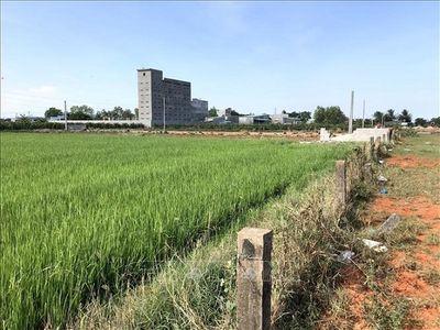 Khởi tố vụ án sai phạm về quản lý đất đai tại thành phố Phan Thiết, Bình Thuận - ảnh 1