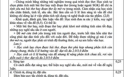 Đáp án, đề thi môn Ngữ Văn vào lớp 10 tại TP.HCM chuẩn nhất, nhanh nhất - ảnh 1