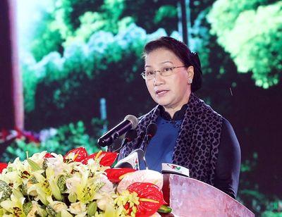 Chủ tịch Quốc hội dự chương trình dâng hương tưởng niệm 60 liệt sĩ Đại đội Thanh niên xung phong 915 - ảnh 1