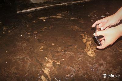 Thau rửa bể chứa khu chung cư: Phát  hiện nước đen kịt, bốc mùi khó chịu - ảnh 1