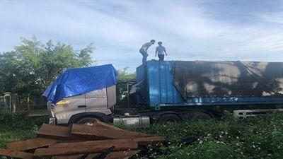 Gia Lai: CSGT bắt xe container chở hơn 40m3 gỗ lậu - ảnh 1