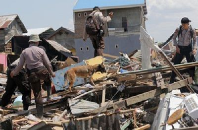 Hơn 1.400 người chết, 300.000 người cần cứu trợ khẩn cấp sau thảm họa ở Indonesia - ảnh 1