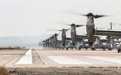 43 trực thăng quân sự Mỹ phô diễn sức mạnh trong cuộc tập trận 'Voi đi bộ' - ảnh 1