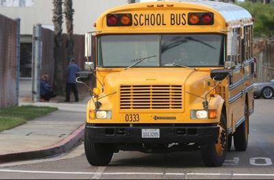 38 trẻ em thiệt mạng vì bị bỏ quên trên ô tô ở Mỹ mỗi năm - ảnh 1