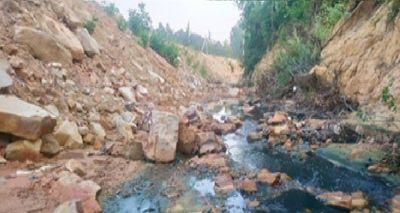 Nghệ An: Doanh nghiệp trồng rừng Lê Duy Nguyên tùy tiện xả thải gây ô nhiễm môi trường? - ảnh 1