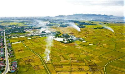 Thực trạng phát triển HTX nông nghiệp ở vùng đồng bằng sông Hồng - ảnh 1